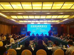 陈泽民董事长应邀出席东亚峰会新能源论坛1